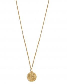 Медальон Водолей
